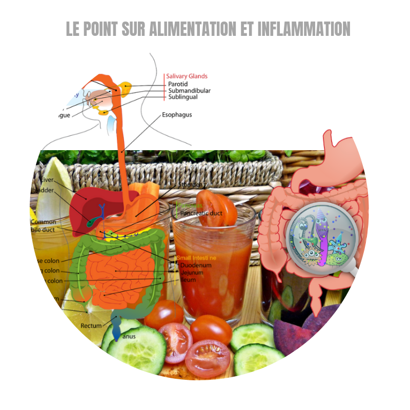 Le point sur inflammation et alimentation